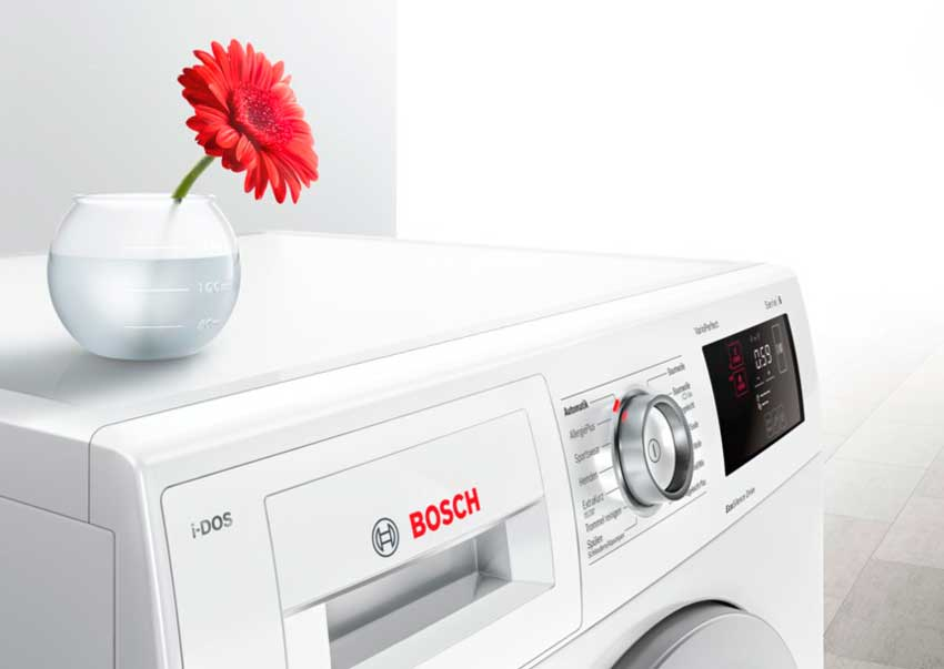 Bosch_flower_BB